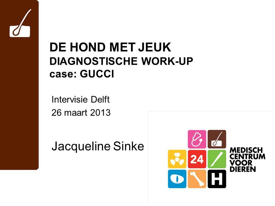 DE HOND MET JEUK DIAGNOSTISCHE WORK-UP case: GUCCI Intervisie Delft 26 maart 2013 Jacqueline Sinke