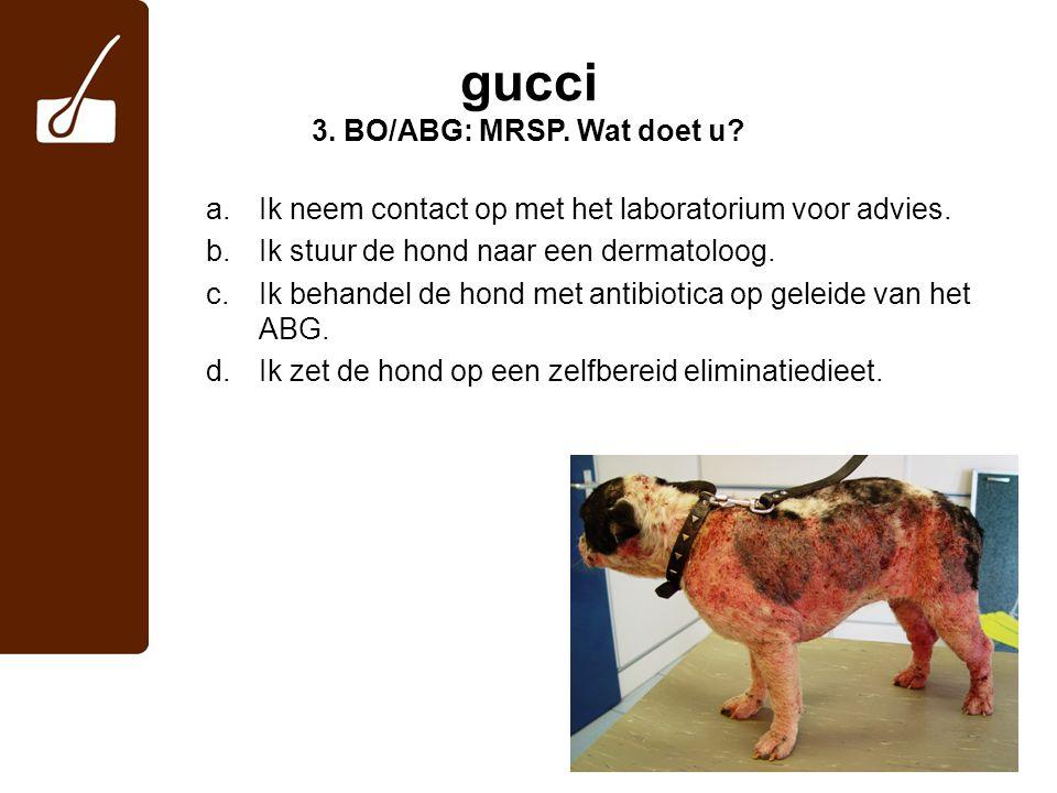 gucci 3. BO/ABG: MRSP. Wat doet u? a.Ik neem contact op met het laboratorium voor advies. b.Ik stuur de hond naar een dermatoloog. c.Ik behandel de ho