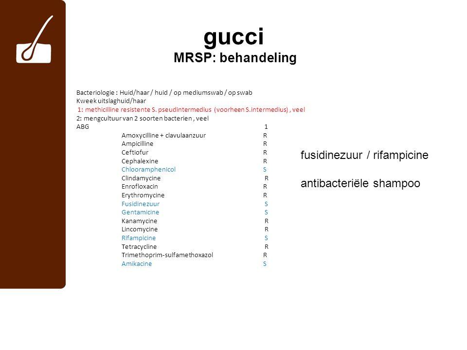 gucci MRSP: behandeling Bacteriologie : Huid/haar / huid / op mediumswab / op swab Kweek uitslaghuid/haar 1: methicilline resistente S. pseudintermedi