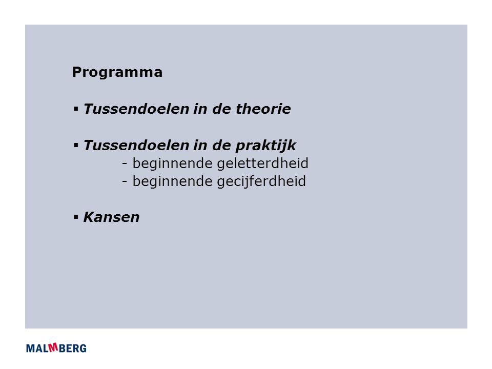 Programma  Tussendoelen in de theorie  Tussendoelen in de praktijk - beginnende geletterdheid - beginnende gecijferdheid  Kansen