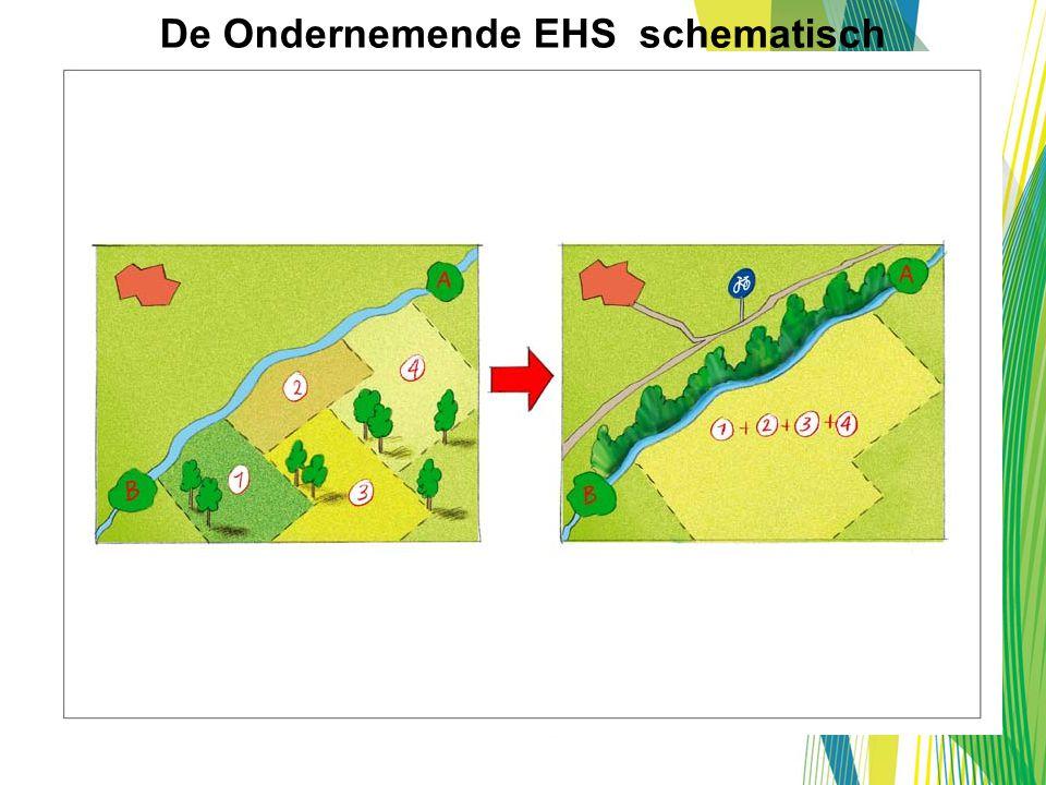 De Ondernemende EHS schematisch