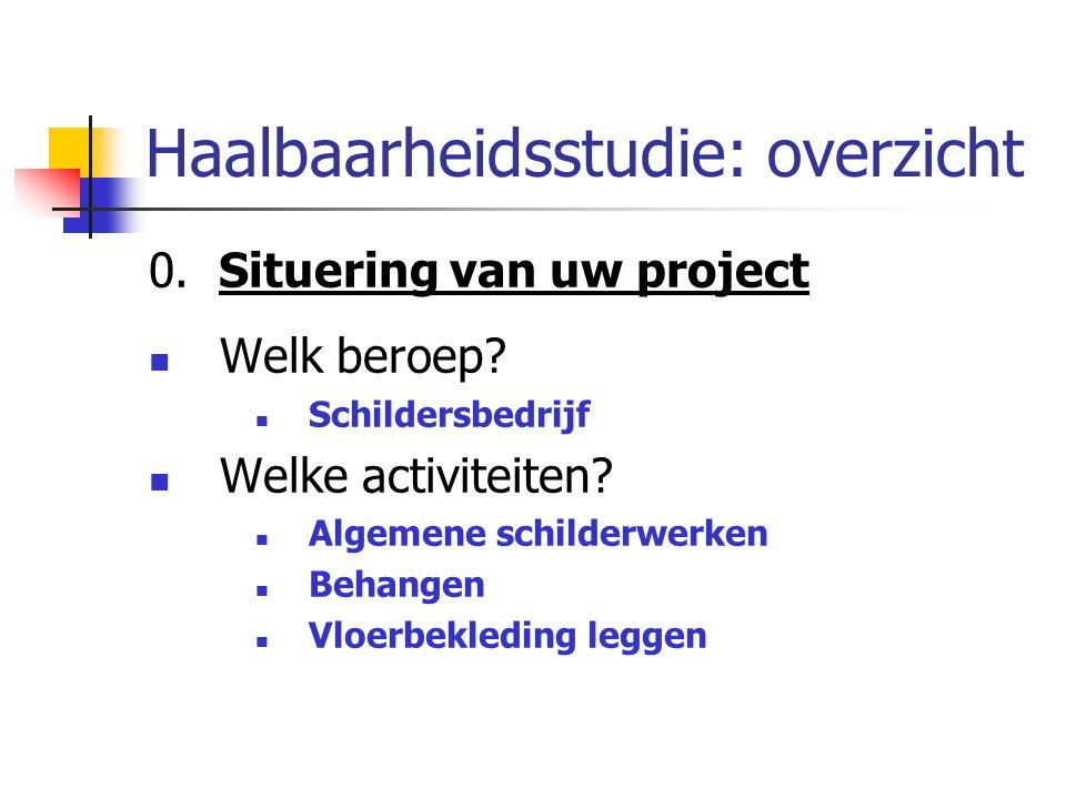 Haalbaarheidsstudie: overzicht 0. Situering van uw project Welk beroep? Schildersbedrijf Welke activiteiten? Algemene schilderwerken Behangen Vloerbek