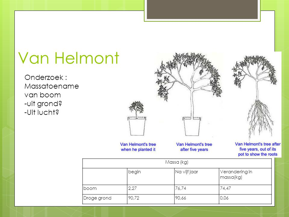 Van Helmont Massa (kg) beginNa vijf jaarVerandering in massa(kg) boom2,2776,7474,47 Droge grond90,7290,660,06 Onderzoek : Massatoename van boom -uit g