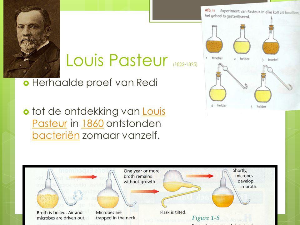 Louis Pasteur (1822-1895)  Herhaalde proef van Redi  tot de ontdekking van Louis Pasteur in 1860 ontstonden bacteriën zomaar vanzelf.Louis Pasteur18
