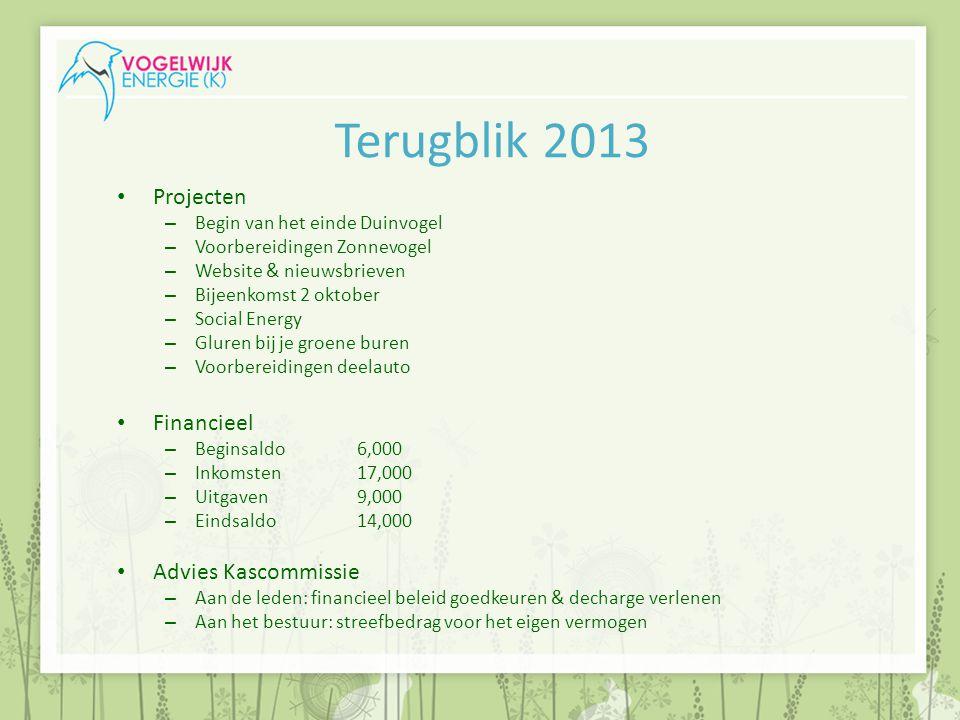 Terugblik 2013 Projecten – Begin van het einde Duinvogel – Voorbereidingen Zonnevogel – Website & nieuwsbrieven – Bijeenkomst 2 oktober – Social Energ