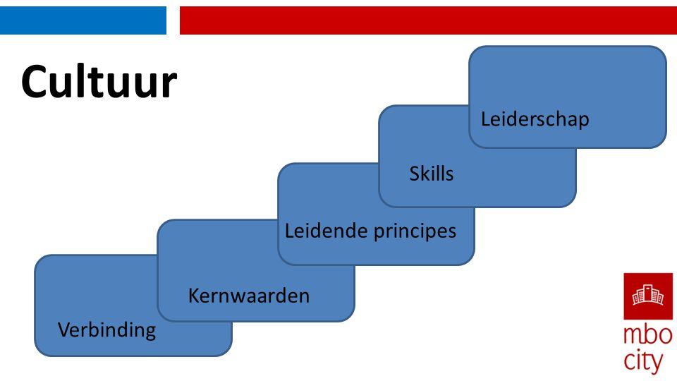Cultuur Verbinding Kernwaarden Skills Leidende principes Leiderschap
