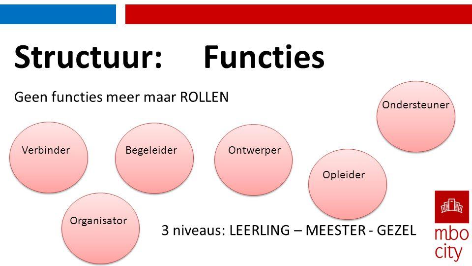 Structuur: Functies Geen functies meer maar ROLLEN Verbinder BegeleiderOntwerper Opleider Organisator Ondersteuner 3 niveaus: LEERLING – MEESTER - GEZ