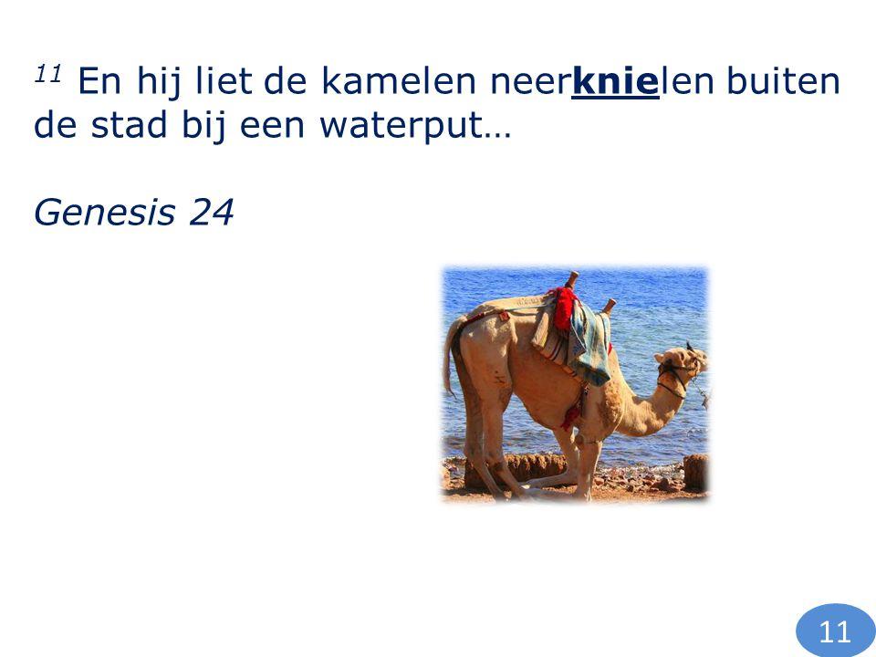 11 En hij liet de kamelen neerknielen buiten de stad bij een waterput… Genesis 24 11