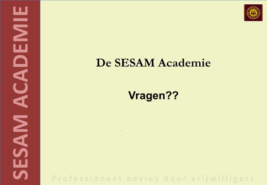 SESAM ACADEMIE Professioneel advies door vrijwilligers De SESAM Academie Vragen