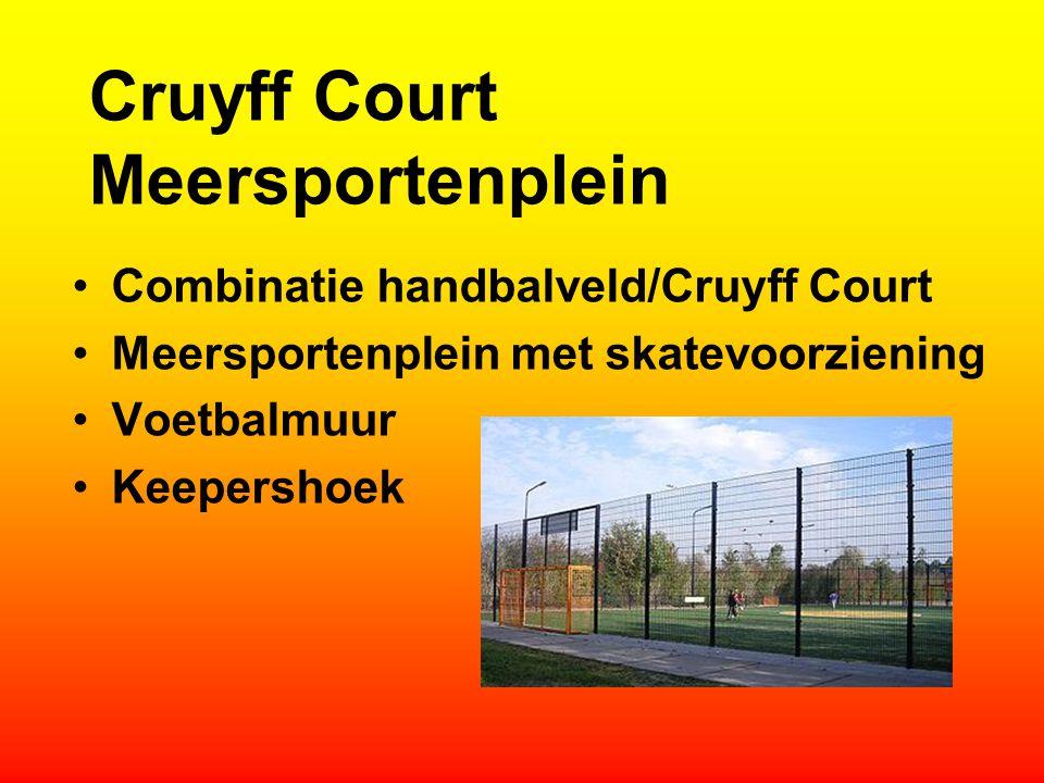 Cruyff Court Meersportenplein Combinatie handbalveld/Cruyff Court Meersportenplein met skatevoorziening Voetbalmuur Keepershoek