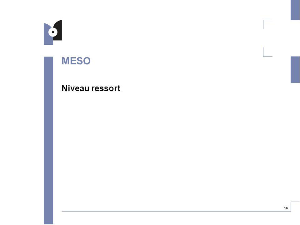16 MESO Niveau ressort