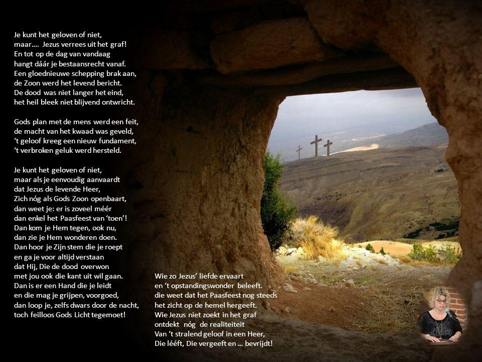 Je kunt het geloven of niet, maar…. Jezus verrees uit het graf! En tot op de dag van vandaag hangt dáár je bestaansrecht vanaf. Een gloednieuwe schepp