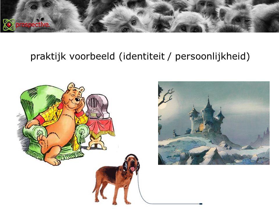 praktijk voorbeeld (identiteit / persoonlijkheid)