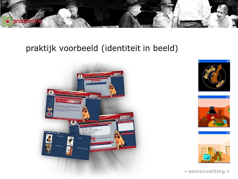 praktijk voorbeeld (identiteit in beeld) samenvatting >