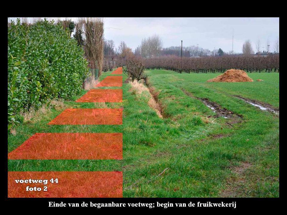 Einde van de begaanbare voetweg; begin van de fruikwekerij
