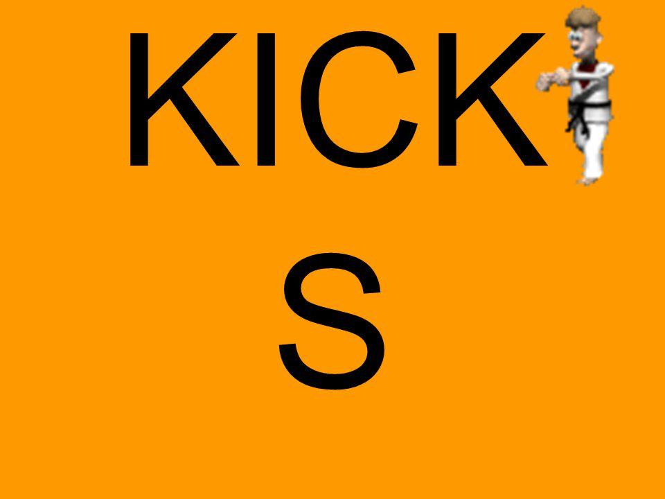 CATEGORISATIE VAN KICKS Kick  overal aanwezig  elke dag  speldenprikje  molenslag  vernietigend of helend  gezocht zijn of onverwacht