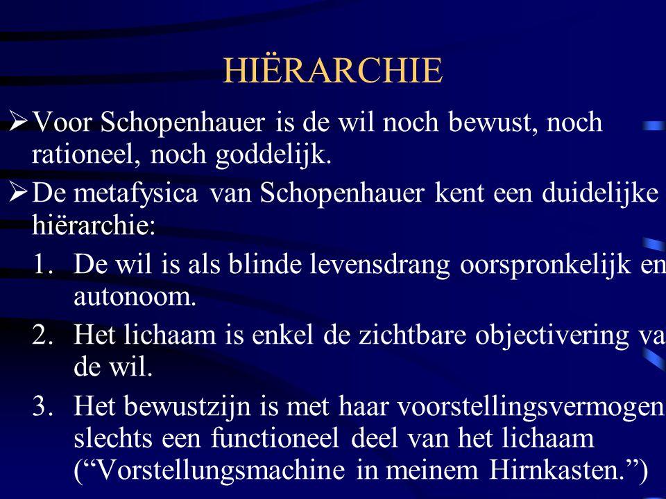 HIËRARCHIE  Voor Schopenhauer is de wil noch bewust, noch rationeel, noch goddelijk.  De metafysica van Schopenhauer kent een duidelijke hiërarchie: