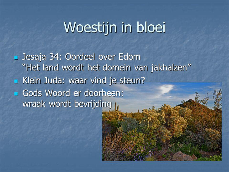 Woestijn in bloei Jesaja 34: Oordeel over Edom Het land wordt het domein van jakhalzen Jesaja 34: Oordeel over Edom Het land wordt het domein van jakhalzen Klein Juda: waar vind je steun.