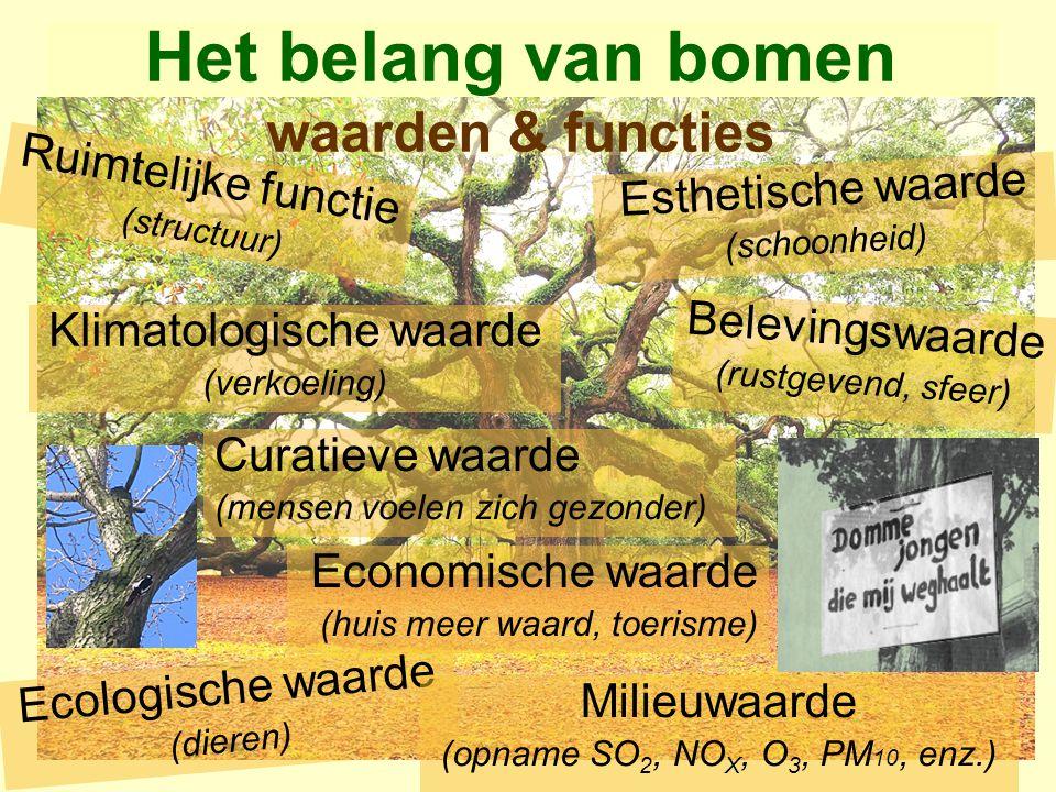 Beschutting en voedsel voor dieren Verschillende functies voor de stad (groen gezicht, natuurlijke afscheiding, windvang) Wij pleiten voor bescherming van dit groen.