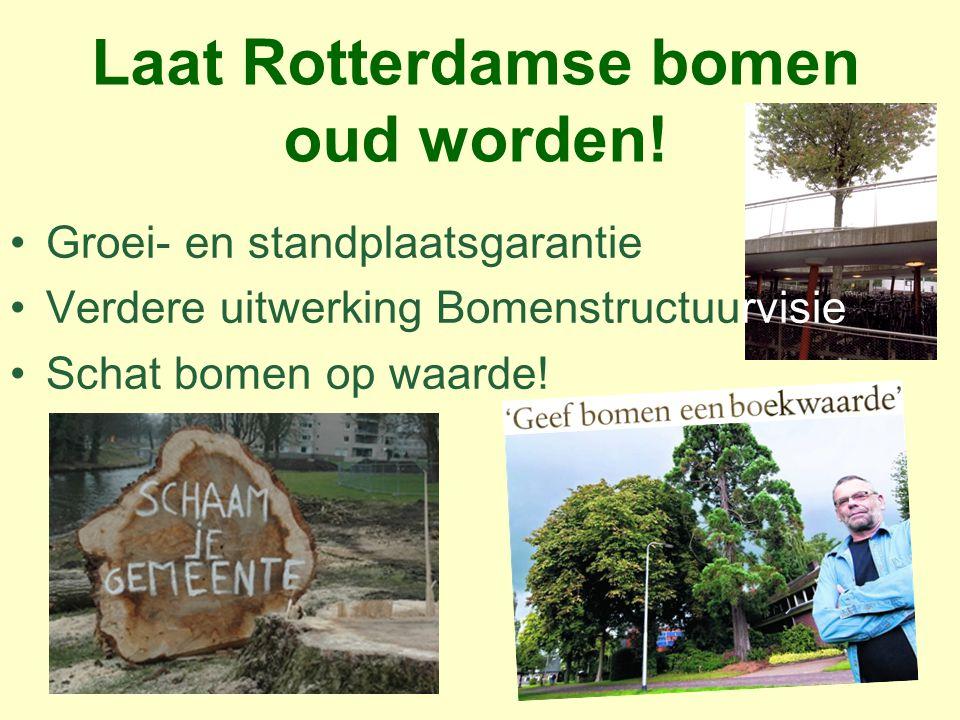 Laat Rotterdamse bomen oud worden! Groei- en standplaatsgarantie Verdere uitwerking Bomenstructuurvisie Schat bomen op waarde!