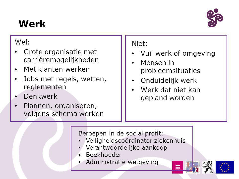 Werk Wel: Grote organisatie met carrièremogelijkheden Met klanten werken Jobs met regels, wetten, reglementen Denkwerk Plannen, organiseren, volgens s