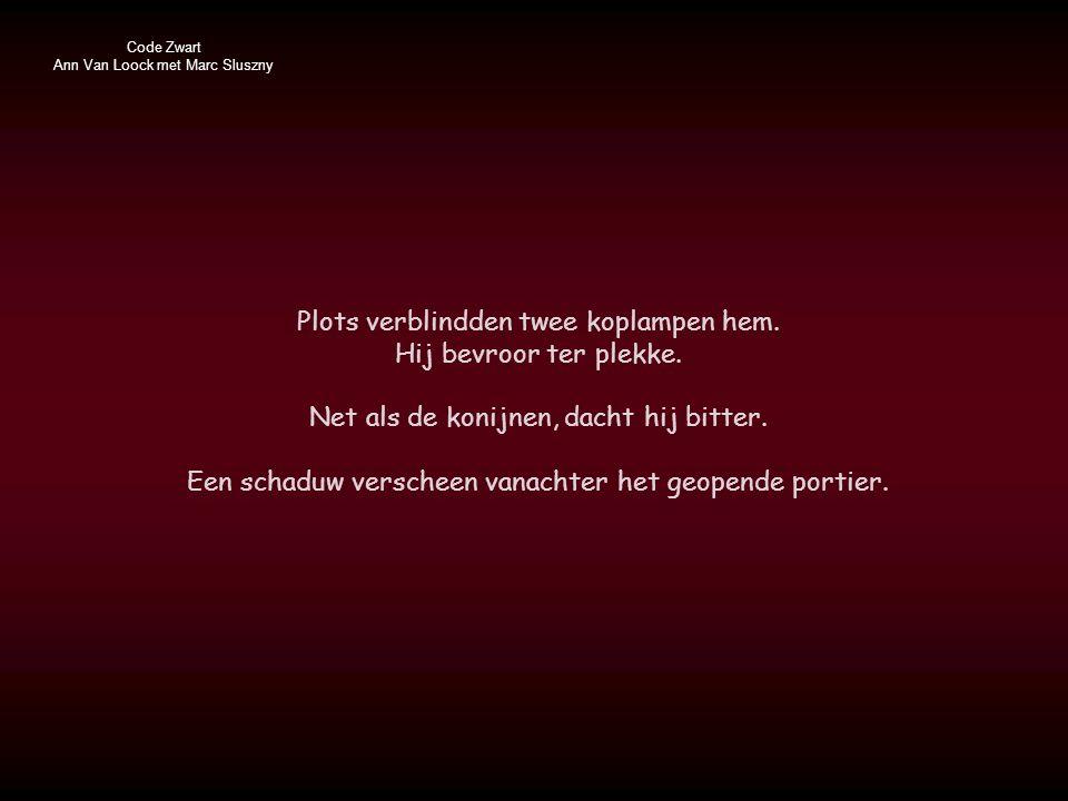 Code Zwart Ann Van Loock met Marc Sluszny Plots verblindden twee koplampen hem.