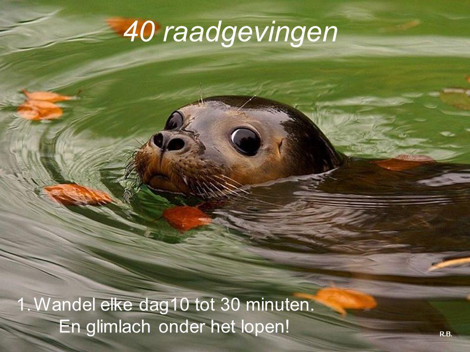 R.B. 40 raadgevingen 1.Wandel elke dag10 tot 30 minuten. En glimlach onder het lopen!