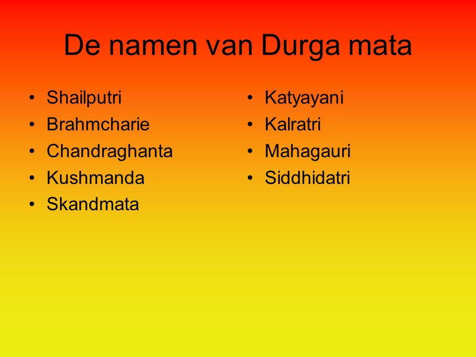 De namen van Durga mata Shailputri Brahmcharie Chandraghanta Kushmanda Skandmata Katyayani Kalratri Mahagauri Siddhidatri