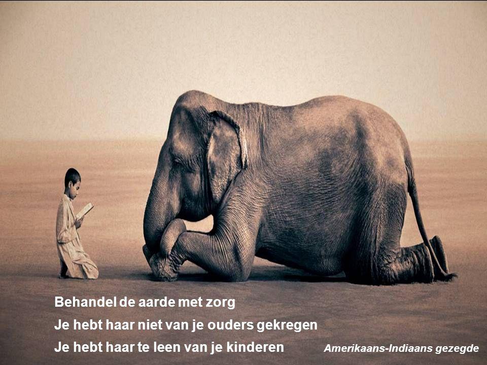 Vragen ??? pjotr.timmerman@han.nl