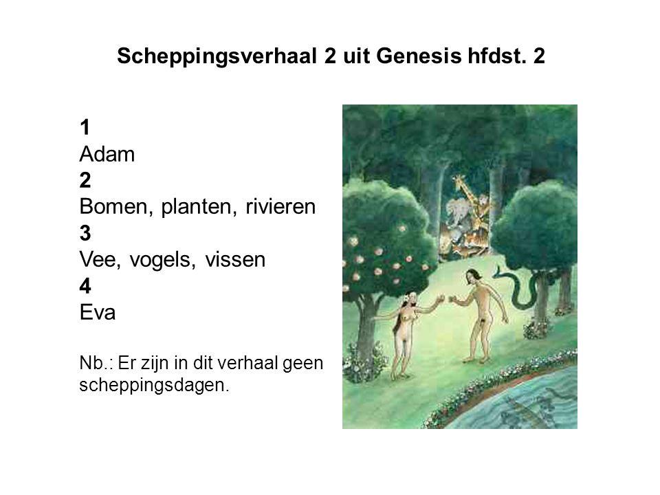 Scheppingsverhaal 2 uit Genesis hfdst. 2 1 Adam 2 Bomen, planten, rivieren 3 Vee, vogels, vissen 4 Eva Nb.: Er zijn in dit verhaal geen scheppingsdage