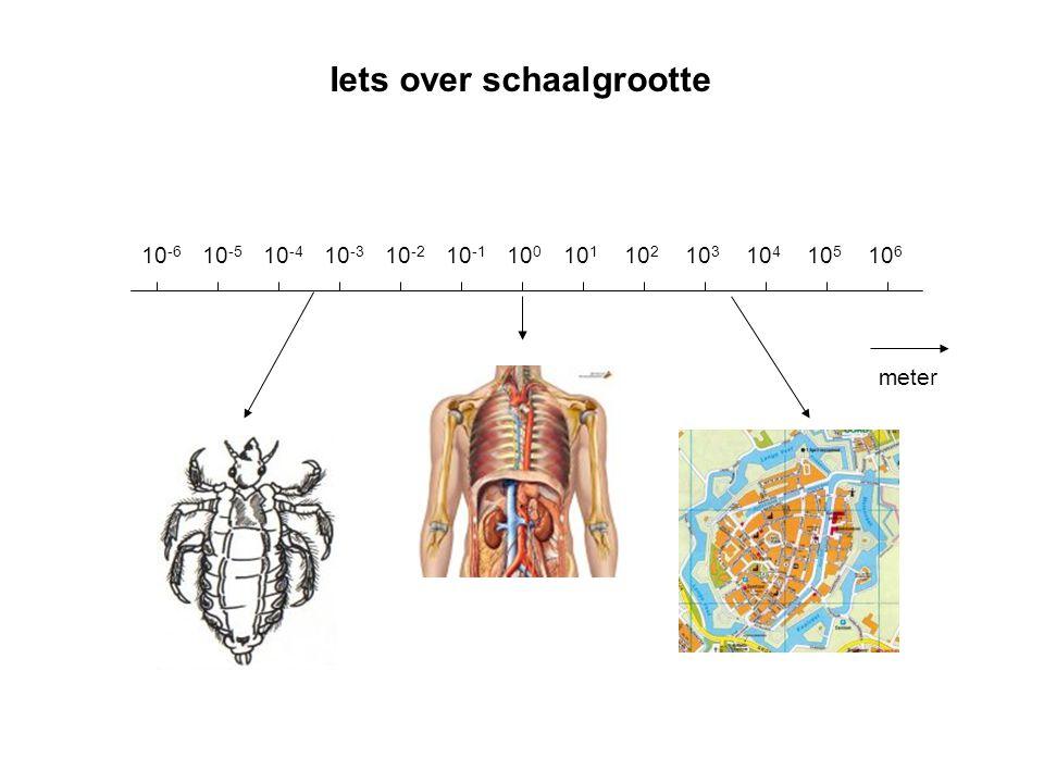 Iets over schaalgrootte meter 10 0 10 1 10 2 10 3 10 4 10 5 10 6 10 -1 10 -2 10 -3 10 -4 10 -5 10 -6