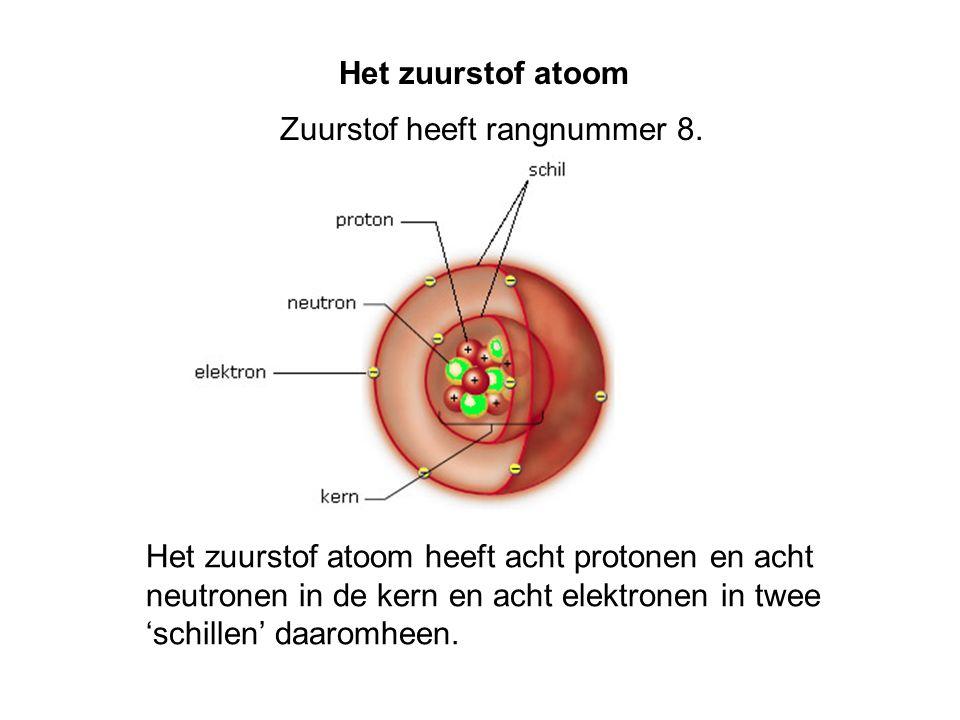 Het zuurstof atoom Zuurstof heeft rangnummer 8. Het zuurstof atoom heeft acht protonen en acht neutronen in de kern en acht elektronen in twee 'schill