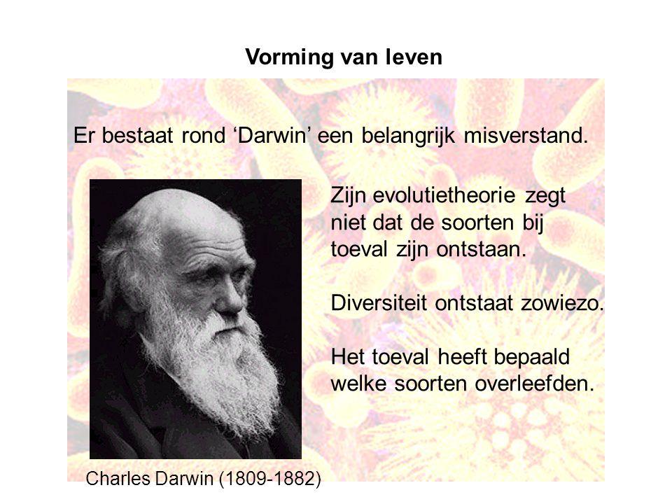 Vorming van leven Er bestaat rond 'Darwin' een belangrijk misverstand. Zijn evolutietheorie zegt niet dat de soorten bij toeval zijn ontstaan. Diversi
