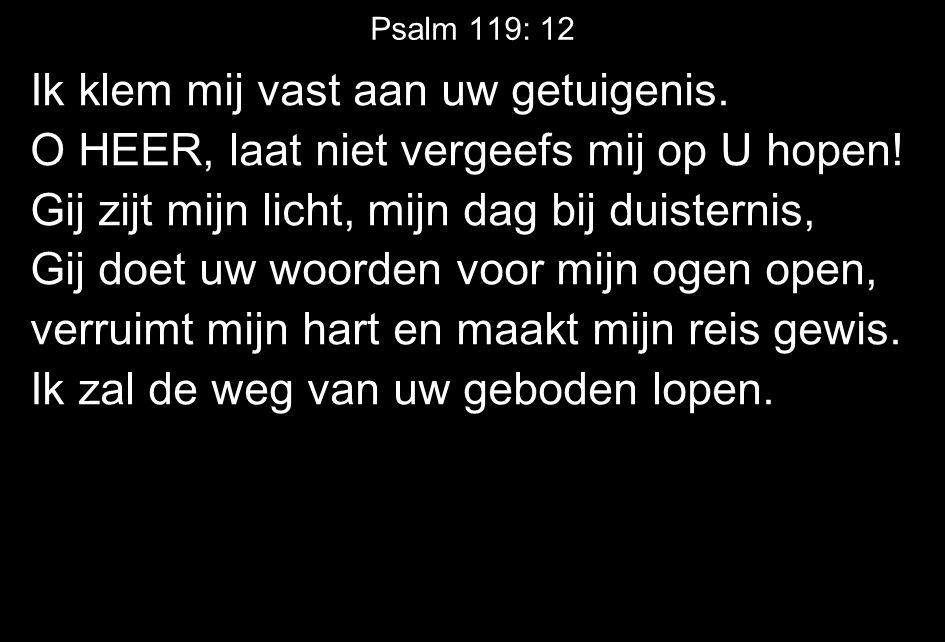 Psalm 119: 12 Ik klem mij vast aan uw getuigenis. O HEER, laat niet vergeefs mij op U hopen.