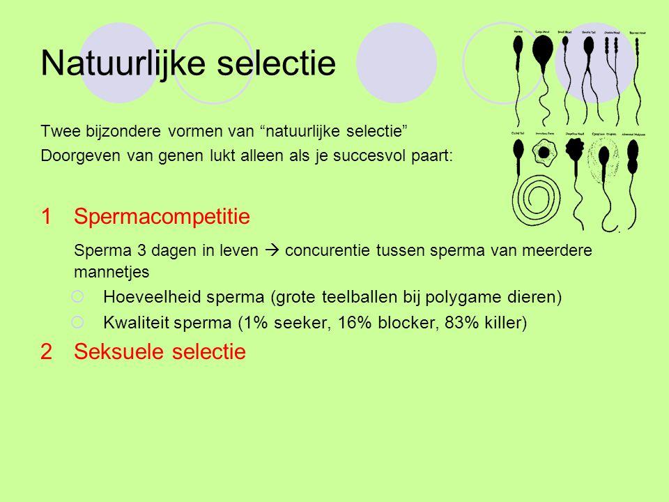 Seksuele selectie Het veroveren van een partner: seksuele selectie, is voorbeeld van natuurlijke selectie Man: Wil zoveel mogelijk genen doorgeven Vrouw: Wil beste genen ontvangen Waarom verschil.