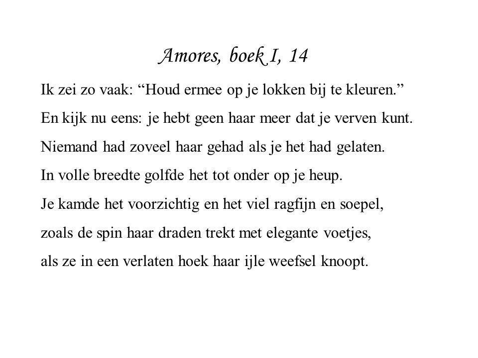 """Amores, boek I, 14 Ik zei zo vaak: """"Houd ermee op je lokken bij te kleuren."""" En kijk nu eens: je hebt geen haar meer dat je verven kunt. Niemand had z"""