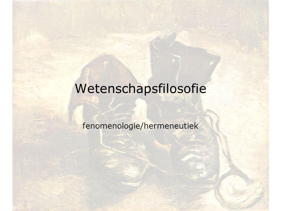 Wetenschapsfilosofie fenomenologie/hermeneutiek