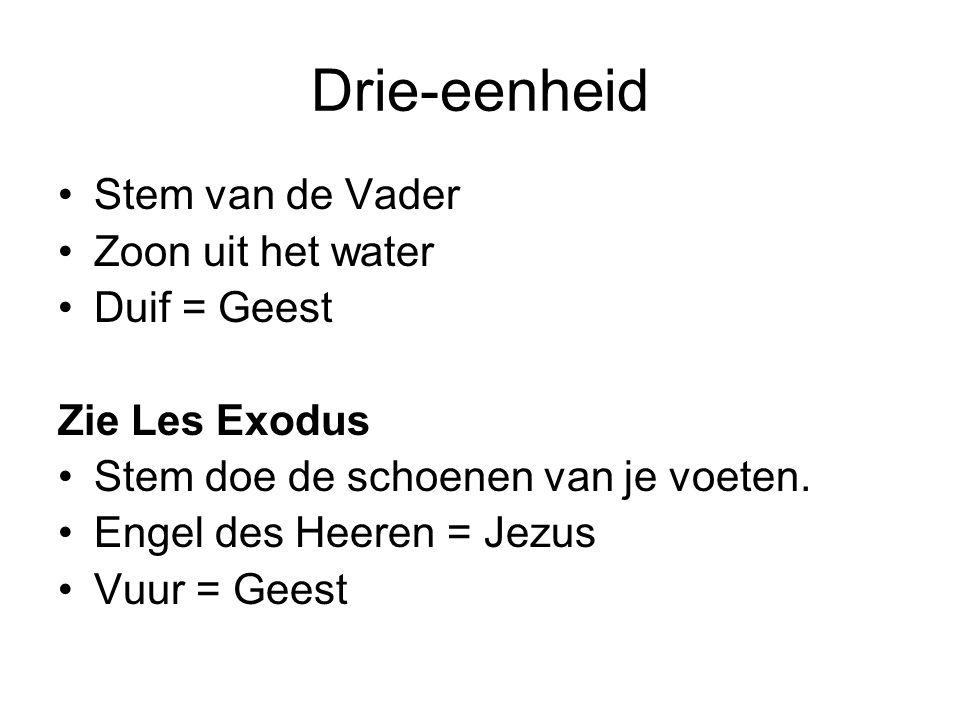 Drie-eenheid Stem van de Vader Zoon uit het water Duif = Geest Zie Les Exodus Stem doe de schoenen van je voeten. Engel des Heeren = Jezus Vuur = Gees