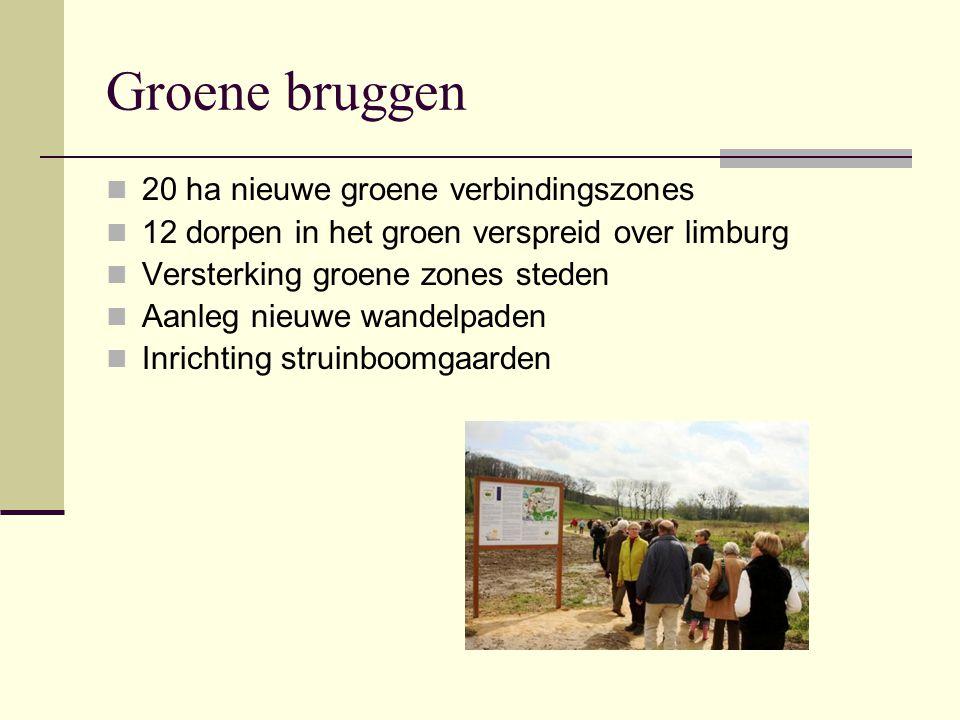 Groene bruggen 20 ha nieuwe groene verbindingszones 12 dorpen in het groen verspreid over limburg Versterking groene zones steden Aanleg nieuwe wandel
