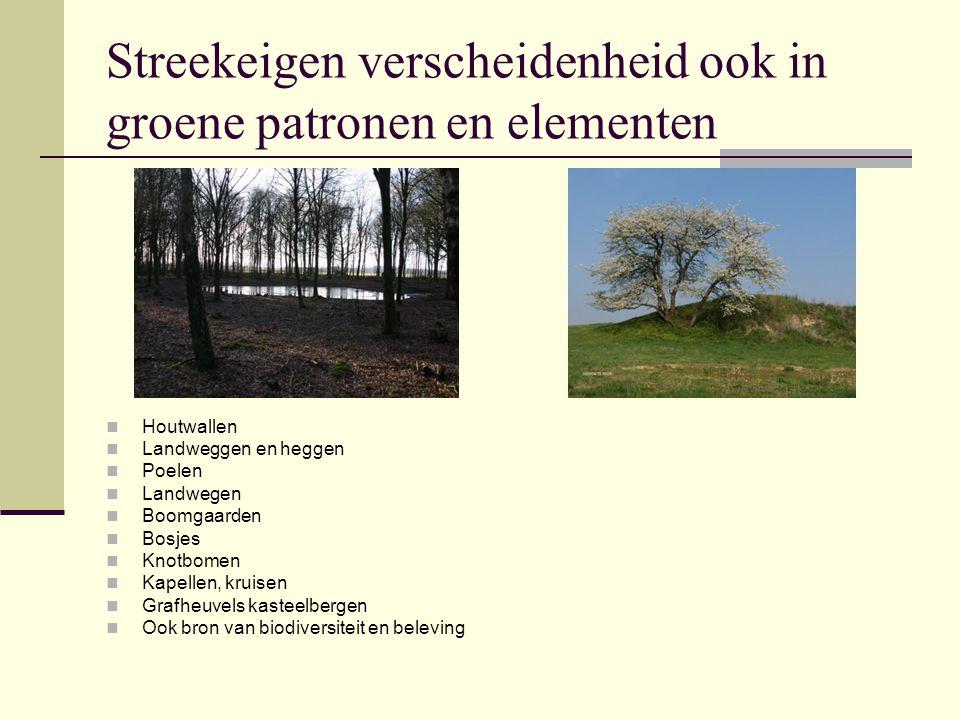 Streekeigen verscheidenheid ook in groene patronen en elementen Houtwallen Landweggen en heggen Poelen Landwegen Boomgaarden Bosjes Knotbomen Kapellen
