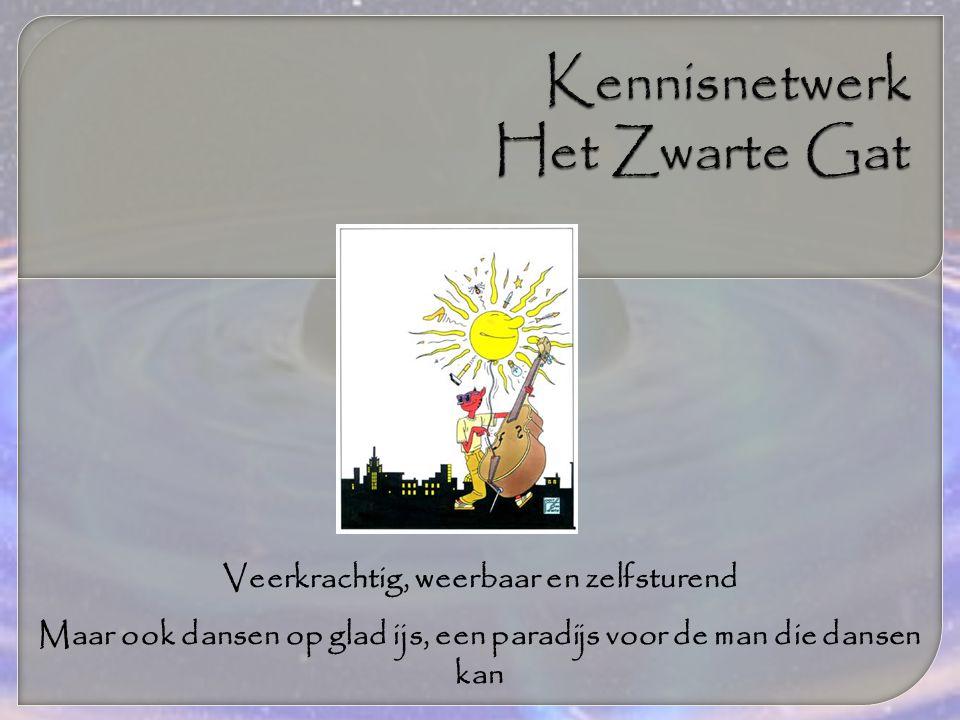 Gezien vanuit het beleid van de overheid en organisaties als GGZ Nederland (visiedocument, van Herstel naar gelijkwaardig burgerschap, GGZ Nederland, 2008) en Kennisnetwerk het Zwarte Gat (Handvest van Maastricht, 2008) is een weg terug voor ons niet denkbaar!