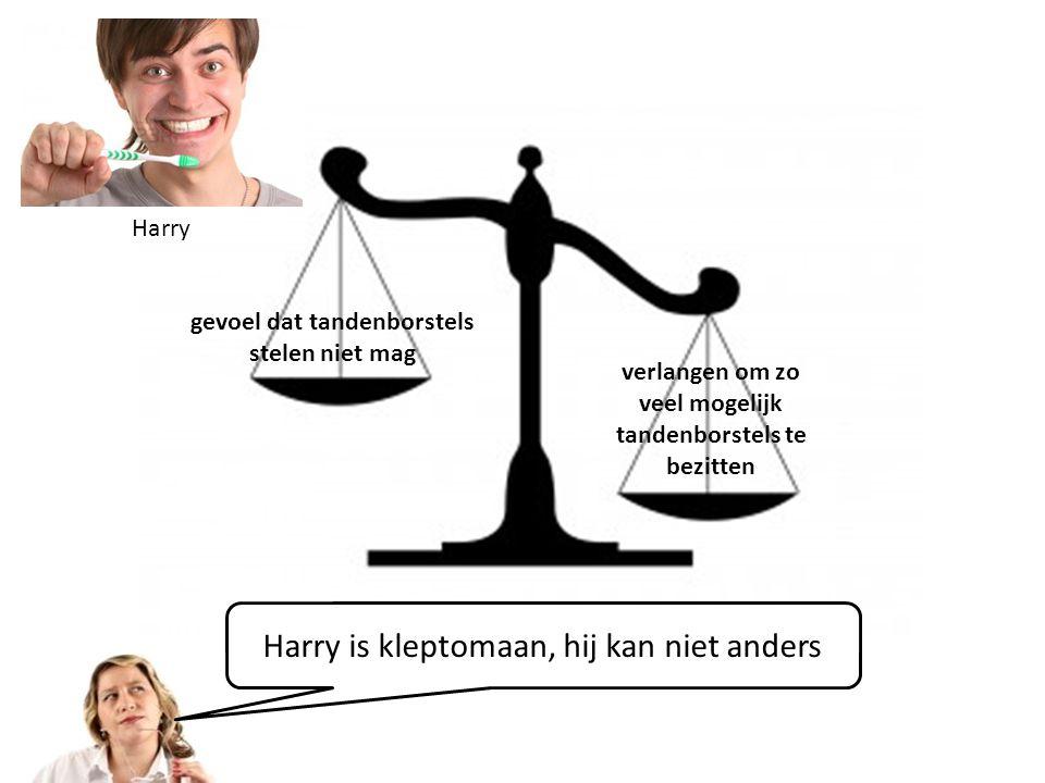 verlangen om zo veel mogelijk tandenborstels te bezitten gevoel dat tandenborstels stelen niet mag Harry