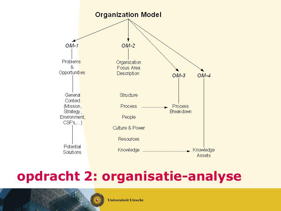 opdracht 2: organisatie-analyse