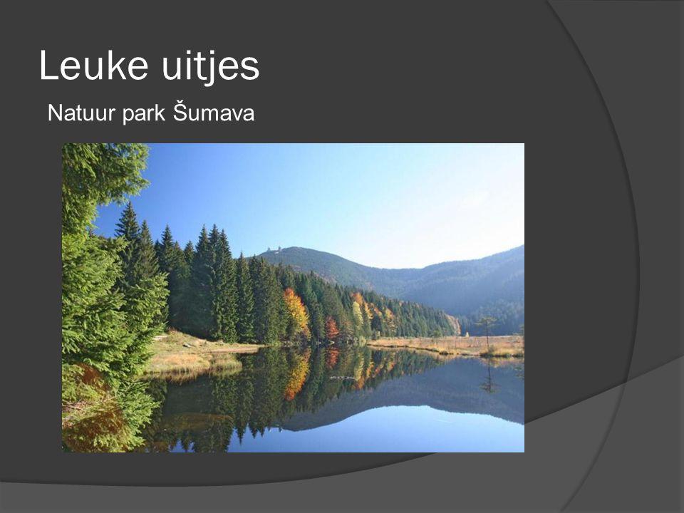 Leuke uitjes Natuur park Šumava