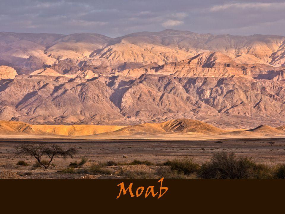 Masee - yewm Moab