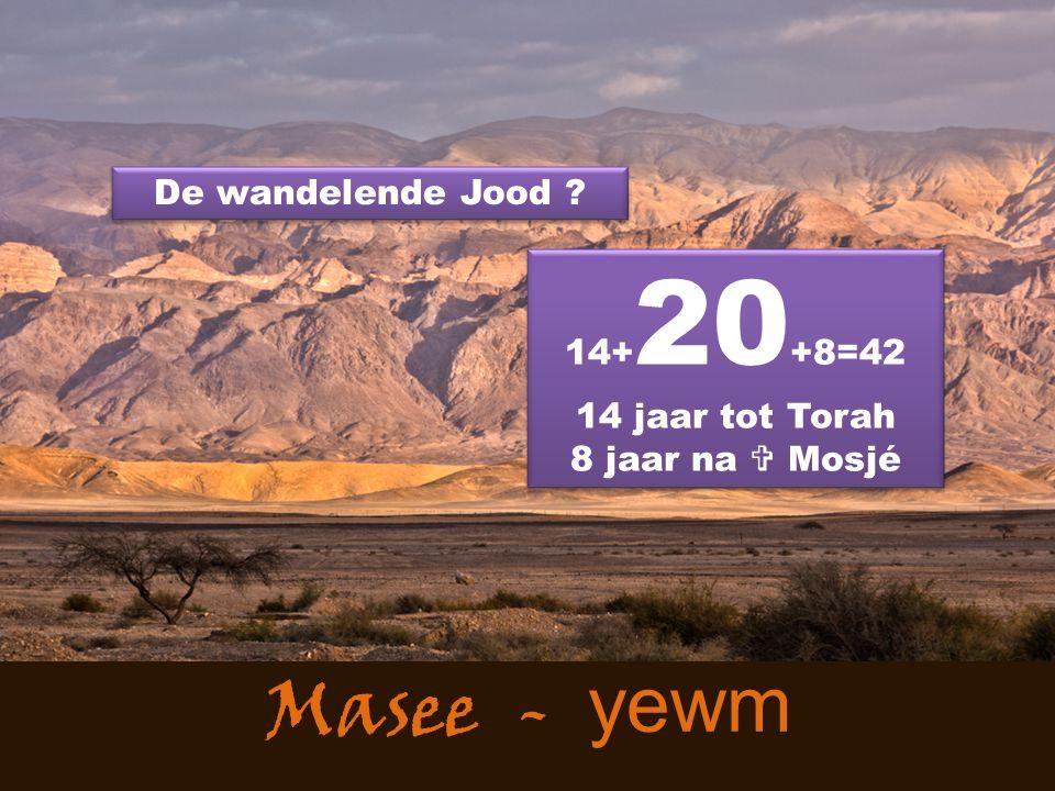 Masee - yewm De wandelende Jood ? 14+ 20 +8=42 14 jaar tot Torah 8 jaar na  Mosjé 14+ 20 +8=42 14 jaar tot Torah 8 jaar na  Mosjé
