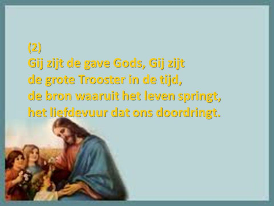 (2) Gij zijt de gave Gods, Gij zijt de grote Trooster in de tijd, de bron waaruit het leven springt, het liefdevuur dat ons doordringt.