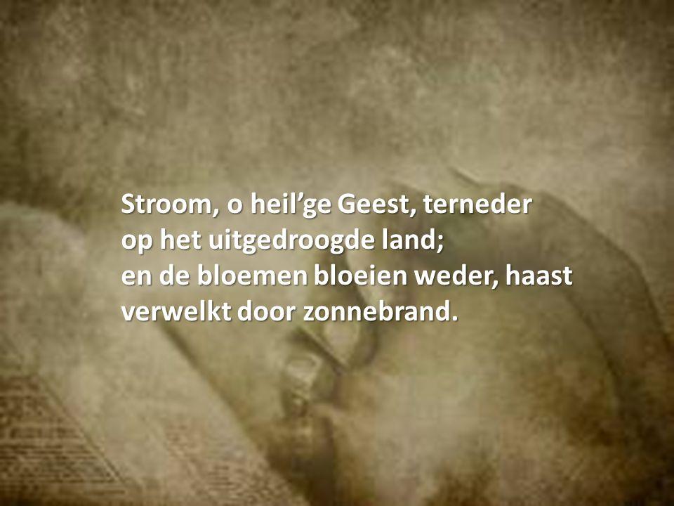 Stroom, o heil'ge Geest, terneder op het uitgedroogde land; en de bloemen bloeien weder, haast verwelkt door zonnebrand.