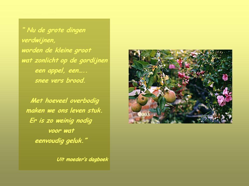 Nu de grote dingen verdwijnen, worden de kleine groot wat zonlicht op de gordijnen een appel, een…..