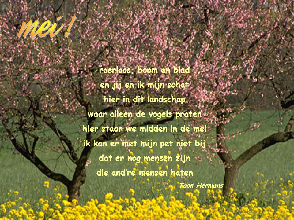 Klank en AVOND Ach, m'n ziel is louter klanken In dit uur van louter kleuren Klanken, die omhoge ranken In een dolle tuin van geuren.